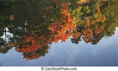 Reflection of autumn trees in the water Autumn Landscape...