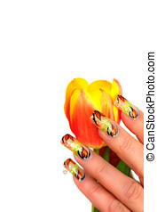 Nailart - Womans hand with beautiful nailart