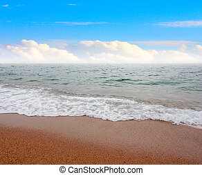 sandy beach - View of the sandy beach of the sea coast of...