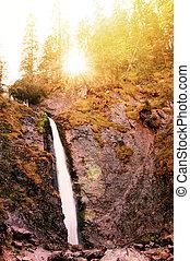 Nature. Waterfall.