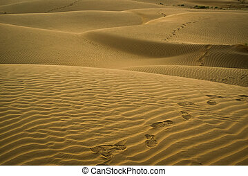 Footsteps on the dunes - Footsteps on the dunes at sunset in...