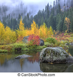 Autumn colors by the calm water.