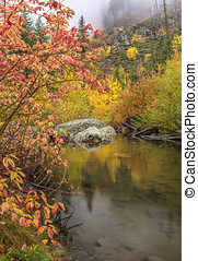 Tranquil fall scene and pond.
