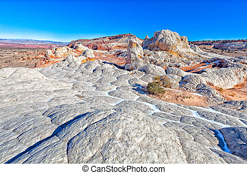 AZ-White Pocket - This wilderness are, located adjacent to...