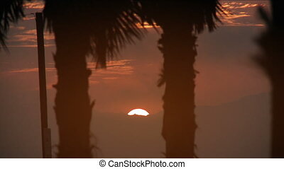 Desert Island Sunset - A beautiful sunset via Venice Beach...