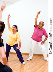 Senior woman in aerobic session - Two Senior woman doing...