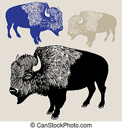 Bison - hand drawn animal isolated on brown background.