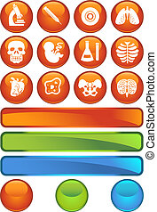 Biology Orange Icon Set - Medical themed buttons.