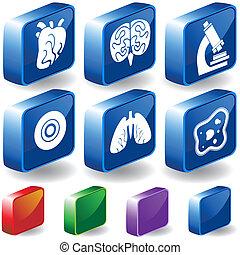 3D Biology Buttons