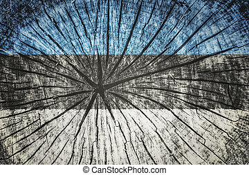 Flag of Estonia on cracked wooden texture