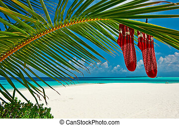 Beach with palm tree at christmas - Beautiful beach with...