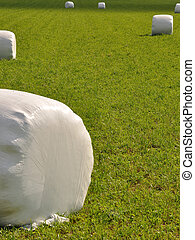 straw bales - bales of straw wrapped up in plastic