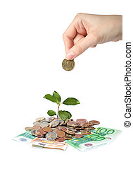Plant hand and money - Money and plant Hand holding euro...