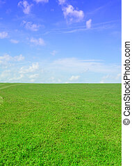 green field - very nice image - green field and blue sky...
