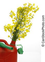 Biodiesel - Red jerrycan with yellow blooming rape -...