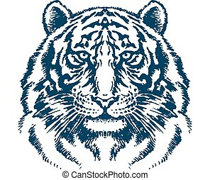 Detailed tiger head vector