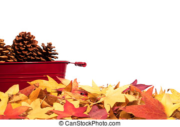 Pine cones and fall leaves