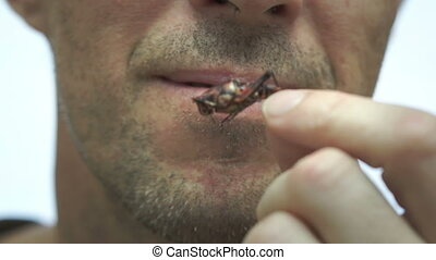 Man Eating Cricket or Grasshopper - Close up shot of a man...