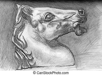 illustration sketch horse on paper
