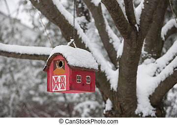 Bird house on tree in winter - Red bird house hanging...