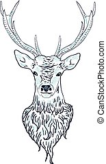 Deer Head - Head of a male deer in hand drawn style...