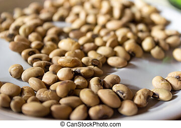 The groundnuts