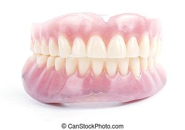 錯誤, 牙齒