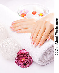 french manicure with colorful chrysanthemum - Woman hands...