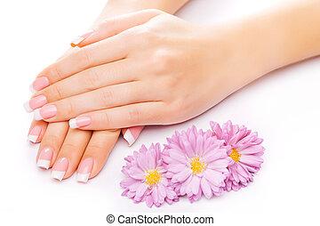 beautiful french manicure on white - beautiful french...