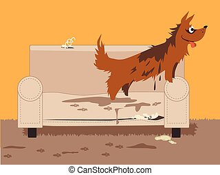 Unruly dog - Wet dirty dog jumping on a torn chair, leaving...
