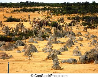 Pinnacle in the pinnacles desert in Nambung National Park,