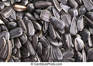 food background from black seeds of sunflower closeup