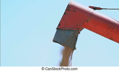 Grain Auger Elevator - Unloading Cereal with Combine Grain...