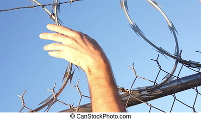Razor Wire Fence Hands Grabbing - Dutch angle shot of the...
