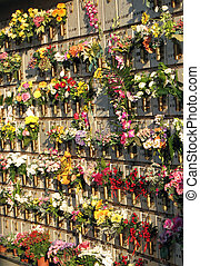 many gravestones and tombs in the cemetery with many flowers