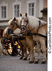 Horsedrawn carriage on the platz in Salzburg, Austria
