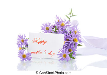 bouquet of lilac chrysanthemums on a white background