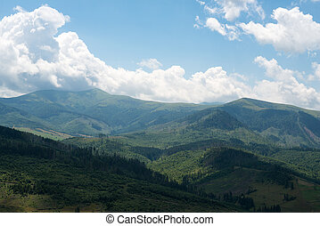 Landscape in the Ukrainian Carpathians - Summer landscape in...