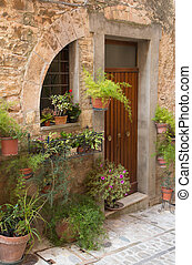 Door with plants and flowers (Spello, Umbria, Italy.) - Door...