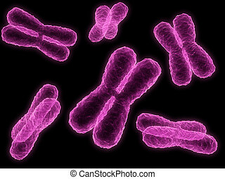 chromosome - 3d rendered close up of some isolated...