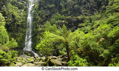 Erskine Falls Waterfall - Erskine Falls waterfall along the...