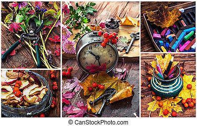 colores, de, otoño,