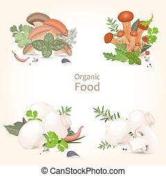 collezione, di, isolato, commestibile, funghi, con, erbe,...