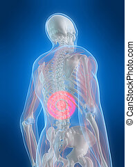 backache illustration - 3d rendered illustration of a human...