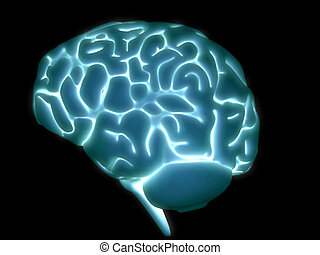 glowing brain - 3d rendered anatomy illustration of a human...