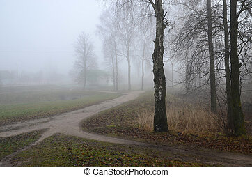 Fog in November - Thick fog in November in the countryside
