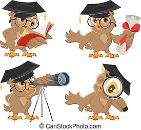 Set owl Illustration in vector format isolated
