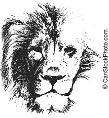 lion head. hand drawn. vector illustration
