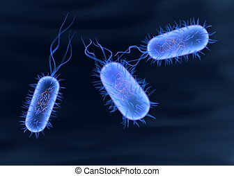bactérias,  3D