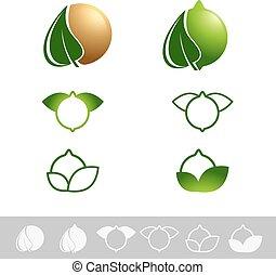 Macadamia Nut Set - Macadamia Nut Logo Design Set Over White